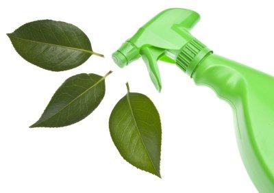 green - school